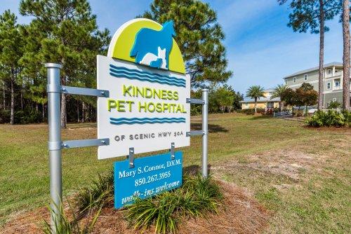 151201-Kindness Pet-002-3000